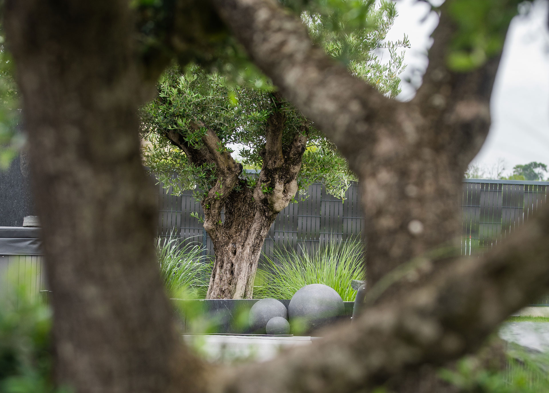creation jardin bayeux paysagiste